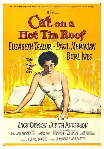 Cat On A Hot Tin Roof [DVD9]