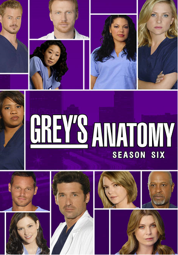 Grey's Anatomy – Season 6 [Latino]